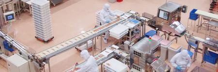 工場改善支援(食品製造業)の画像